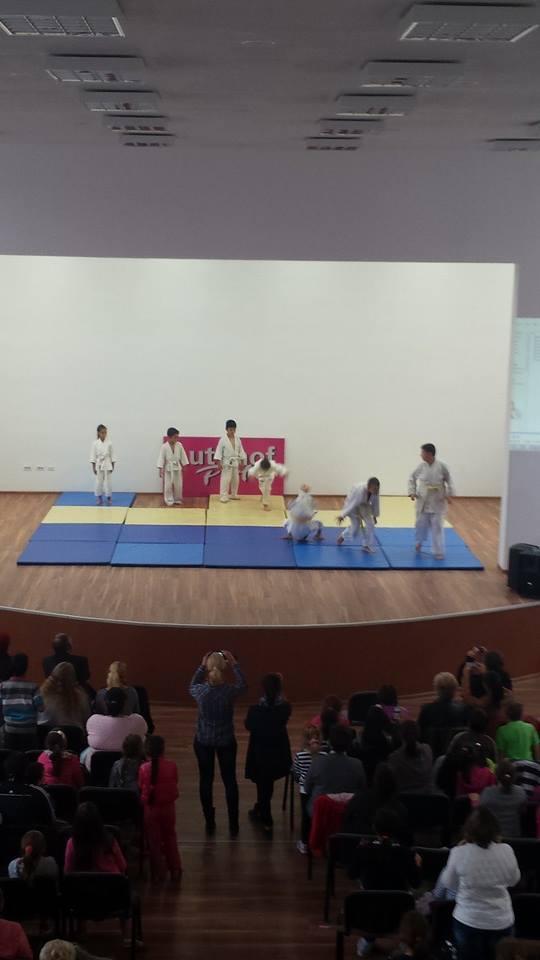 Demonstratie Judo